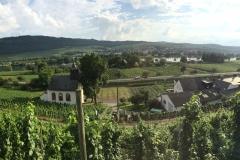 Panoramabild aus den Weinbergen hinter dem Haus